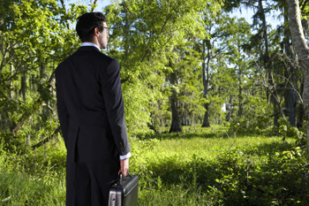 Man weaing suit holding briefcase looks into forest.