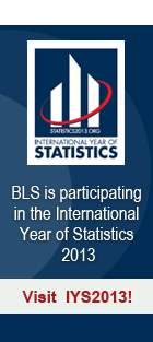International Year of Statistics 2013 banner image