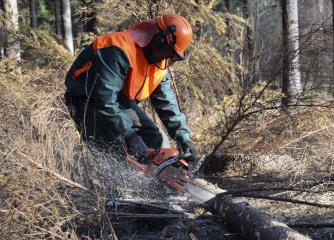 logging workers image