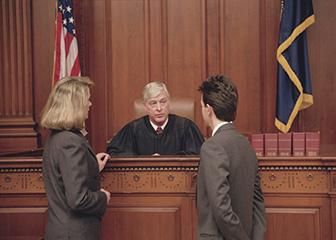 Judges, mediators, and hearing officers