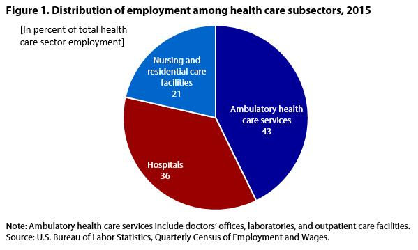 Figure 1. Distribition of employment among health care subsectors, 2015