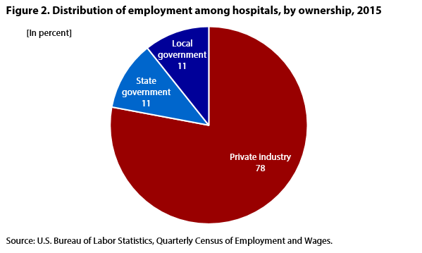 Figure 2. Distribution of employment among hospitals, by hospital ownership, 2015